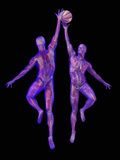 Basketball Players Showing Musculature and Skeletons Photographic Print by Carol &amp; Mike Werner