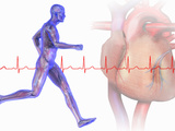 Runner, Male Likeness Showing Musculature and Skeleton Against an Ekg and Heart Photographic Print by Carol & Mike Werner