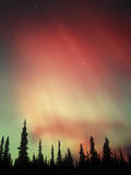 Aurora Borealis, Northern Lights, Alaska Range Mountains, Alaska, USA Photographic Print by Tom Walker