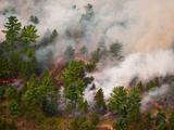 Aerial View of a Prescribed Burn in the Manistee National Forest, Michigan, USA Photographic Print by Jeffrey Wickett