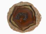 Opened Thunderegg or Geode, New Mexico, USA Photographic Print by  Scientifica