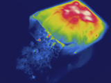 Thermogram - Hot Bag of Popcorn Photographie par  Scientifica