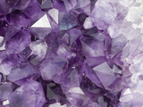 Amethyst Crystals Photographic Print by Scientifica