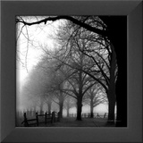Black and White Morning Prints by Harold Silverman