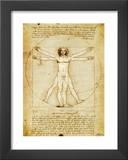 Virtruvian Man Prints by  Leonardo da Vinci
