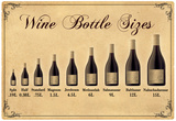 Wine Bottle Size Chart Póster