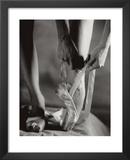 Ballet Shoes Art