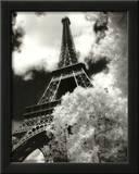 Eiffel Tower (Parc du Champ de Mars) Posters