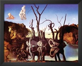 Dali - Reflection Of Elephants Art by Salvador Dali
