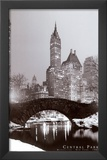 Central Park Posters