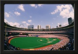 Busch Memorial Stadium St Louis Cardinals Archival Sports Photo Poster Print Print