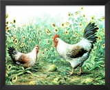 Sunflower Rooster chickens flower Art Print Poster Poster