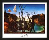 Salvador Dali Swans Reflecting Elephants White Border Art Print Poster Print