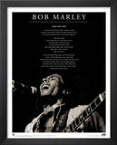 Bob Marley (Iron Lion Zion) Music Poster Print Prints