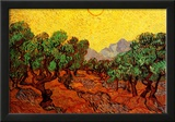 Vincent Van Gogh Olive Trees with Yellow Sky and Sun Art Print Poster Prints