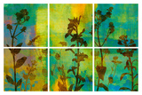 Wild Flowers II Poster by Tania Bello
