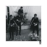 The Beatles VIII Print