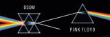 Pink Floyd-DSOM Kunstdrucke