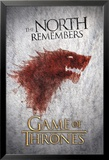 Game of Thrones-Wolf Poster