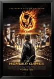 Hunger Games Stadium Posters