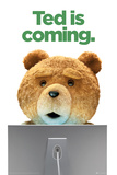 Ted-Is Coming Poster