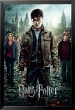 Harry Potter 7-Part 2 One Sheet Affiche