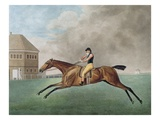 Baronet, 1794 (Etching) Premium Giclee Print by George Stubbs