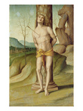 St. Sebastian (Oil on Panel) Premium Giclee Print by Marco Palmezzano
