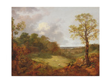Wooded Landscape with a Cottage, Sheep and a Reclining Shepherd, c.1748-50 Giclee Print by Thomas Gainsborough