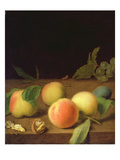 Fruit Still Life, 1730 Giclee Print by Balthasar Denner