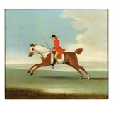 Galloping Racehorse and Mounted Jockey in Red Giclee Print by James Seymour