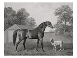 Dungannon, Engraved by George Townley Stubbs (1756-1815) Pub. 1794 (Etching) Reproduction procédé giclée par George Stubbs