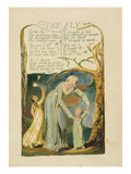 The Fly,' Plate 47 from 'songs of Experience,' 1794 Giclée-Druck von William Blake