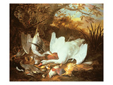 Still Life of Swan and Game in a Landscape Giclee Print by Jan de Wit
