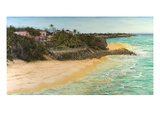 Crane Beach Giclee Print by Victor Collector