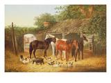 Farmyard Companions Giclee Print by John Frederick Herring Jnr