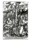 St. Francis Receiving the Stigmata, C.1503-4 (Woodcut) Giclee Print by Albrecht Dürer