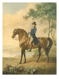 Warren Hastings on His Arabian Horse, 1796 (W/C on Paper) Giclee Print by George Townley Stubbs