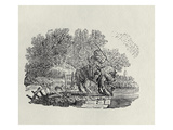 A Rider Distracted by a Flock of Birds (Wood Engravin) Giclee Print by Thomas Bewick
