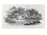 A Bend in the River from 'History of British Birds, Volume 2: Water Birds', 1804 (Woodcut) Premium Giclee Print by Thomas Bewick