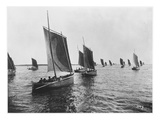 Sardine Boats of Concarneau (Photo) Giclee Print by  French Photographer