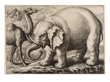 An Elephant and a Camel, Engraved by Wenceslaus Hollar (1607-77) 1663 (Etching) Giclee Print by Francis Barlow
