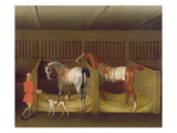 The Stables and Two Famous Running Horses Belonging to His Grace, the Duke of Bolton, 1747 Giclee Print by James Seymour