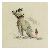A Terrier, Sitting Facing Left (W/C on Paper) Giclee Print by Peter De Wint