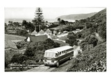 Wilderness, on S.A.R. Motor Coach Route (B/W Photo) Giclee Print by  South African Photographer