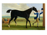 The Duke of Rutland&#39;s &#39;Bonny Black&#39;, C.1720 (Oil on Canvas) Giclee Print by John Wootton