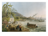Carting and Putting Sugar Hogsheads on Board', Plate X from 'Ten Views in the Island of Antigua' Giclee Print by William Clark