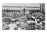 Loading Fruit at Covent Garden Market, 1900 (B/W Photo) Giclee Print by  English Photographer