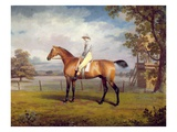 The Duke of Hamilton's Disguise with Jockey Up (Oil on Canvas) Giclee Print by George Garrard