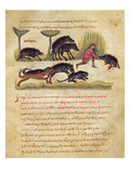 Treatise on the Boar: Life, Mating, Hunting, Illustration from the 'Cynegetica' by Oppian Giclee Print by  Italian